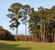 Tall trees block the right half of the fairway on the par-5 eighth hole at Rose Hill Golf Club in Bluffton, S.C.