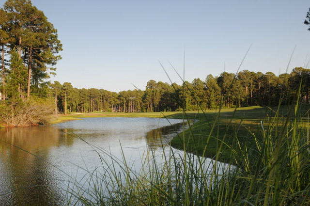 Robert Cupp Course at Palmetto Hall Plantation - hole 13