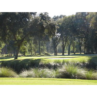 A view obscured by trees on the Planter's Row course at Port Royal Golf Club - get used to it.