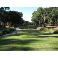 A tiny fairway squeezed between trees is standard operating procedure at the Planter's Row course at Port Royal Golf Club.