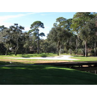 Harbour Town Golf Links's seventh hole, a par 3, has a tiny green surrounded by a desert and guarded atop by a tree-branch canopy.
