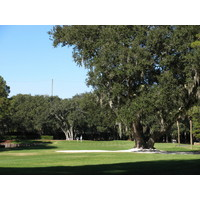 Trees block out the left side of the eighth green at Harbour Town Golf Links.