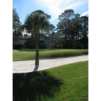 If being in the bunker off the 16th green at Harbour Town Golf Links isn't enough, you might have to circumvent a palm tree.