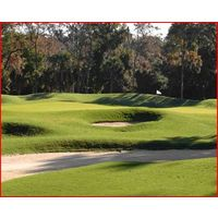 The Heron Point course at Sea Pines Resort tests golfers with undulating fairways and difficult greens.