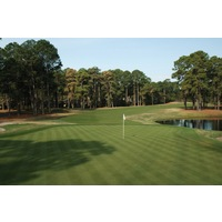 A bird sanctuary runs along the entire right side of the 14th and 15th (shown here) holes at Oyster Reef Golf Club.