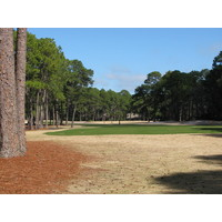 A typical tee shot at Oyster Reef Golf Club must thread through the trees.