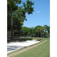 A waste bunker and arching trees make it rough sledding from the left on the fifth hole of the Dye course at Colleton River Plantation.