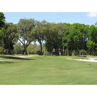 Live oaks serve as backdrops for the fifth green on the Dye course at Colleton River Plantation.