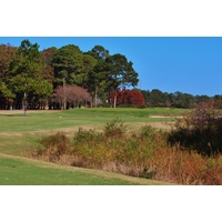 The finishing hole at Hilton Head National Golf Club plays to a double green.