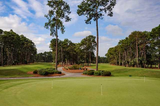 Bear Creek Golf Course Hilton Head Island