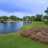 A view from Oyster Reef Golf Course