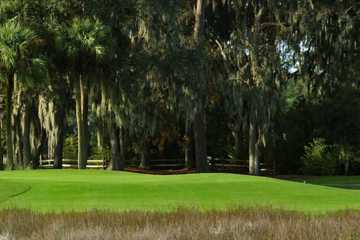 A view from Moss Creek Golf Club