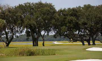 View of the 12th green at Country Club of Hilton Head