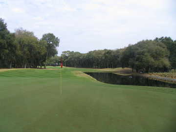 The 18th on the Robber's Row at Port Royal Plantation, looking from the green back at the fairway