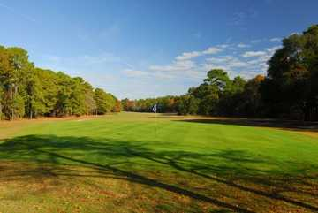A view of green at Lady's Island Country Club